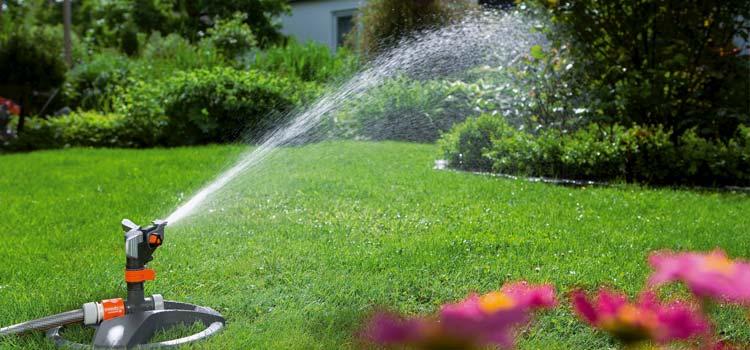 Watering lawn with sprinkler head